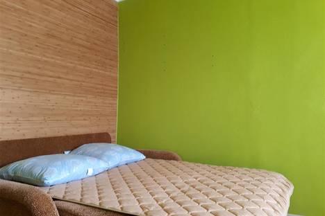 Сдается 1-комнатная квартира посуточно в Переславле-Залесском, улица Менделеева, 56 А.