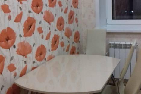 Сдается 2-комнатная квартира посуточно в Тамбове, улица Агапкина, 23.
