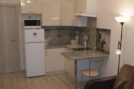 Сдается 1-комнатная квартира посуточнов Санкт-Петербурге, Пулковское шоссе, 14.