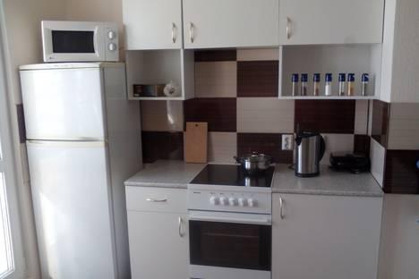 Сдается 1-комнатная квартира посуточно в Санкт-Петербурге, Витебский проспект, 101 к 2.