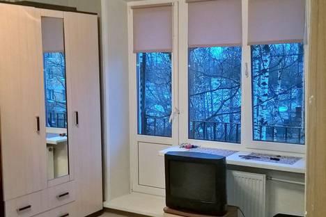 Сдается 1-комнатная квартира посуточно в Пушкине, Ахматовская улица, 15.