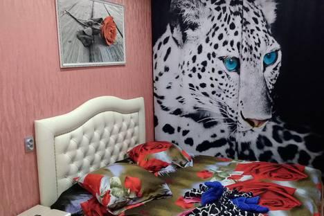 Сдается 3-комнатная квартира посуточно в Гатчине, улица Радищева, 24- ЦЕНТР.