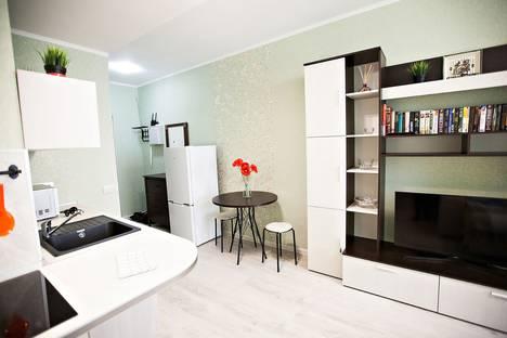 Сдается 1-комнатная квартира посуточно, проспект Просвещения, 43.