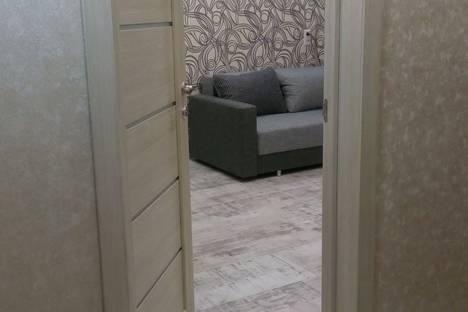 Сдается 1-комнатная квартира посуточно в Великом Новгороде, набережная Александра Невского, 27.