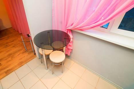 Сдается 1-комнатная квартира посуточно в Челябинске, улица Елькина, 92.