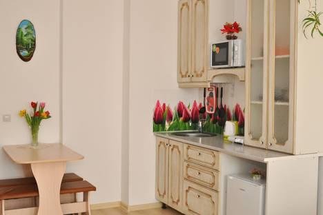 Сдается 1-комнатная квартира посуточно в Екатеринбурге, улица Степана Разина, дом 2.