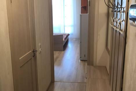 Сдается 1-комнатная квартира посуточно в Санкт-Петербурге, Пулковское шоссе, 14E.