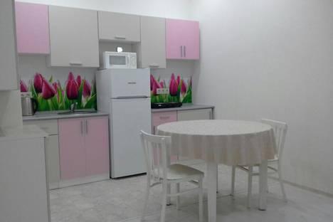 Сдается 2-комнатная квартира посуточно в Сочи, улица Пластунская, 154.