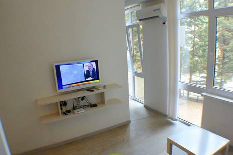 Сдается 1-комнатная квартира посуточно в Адлере, Большой Сочи, улица Цветочная, 44/3.