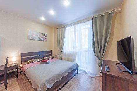 Сдается 1-комнатная квартира посуточно, Ленинградская область,Девяткино Охтинская аллея 6.