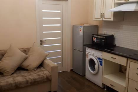 Сдается 1-комнатная квартира посуточно в Ессентуках, улица Нелюбина, 25/1.