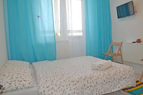 Сдается 1-комнатная квартира посуточно в Ногинске, улица Дмитрия Михайлова.