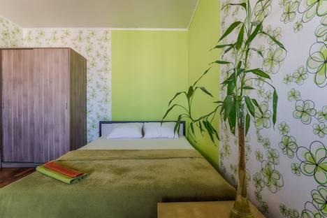 Сдается 1-комнатная квартира посуточно в Санкт-Петербурге, проспект Большевиков, 9.