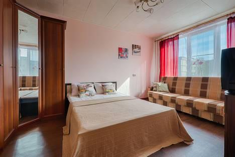 Сдается 1-комнатная квартира посуточно в Санкт-Петербурге, Искровский проспект, 28.