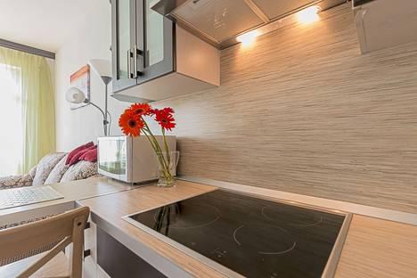 Сдается 1-комнатная квартира посуточно в Санкт-Петербурге, Союзный проспект, 4.