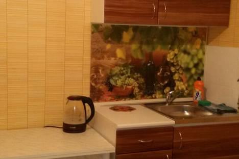 Сдается 1-комнатная квартира посуточно в Горно-Алтайске, набережная улица 6.