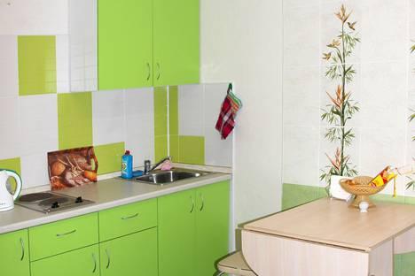 Сдается 1-комнатная квартира посуточно в Верхней Пышме, Успенский проспект, 113б.