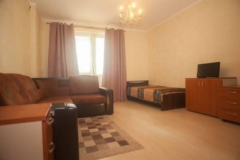Сдается 1-комнатная квартира посуточно в Пушкино, 2-я Домбровская улица, 27.