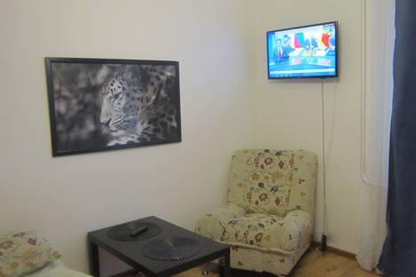 Сдается 1-комнатная квартира посуточно в Гатчине, Рощинская улица, 2.