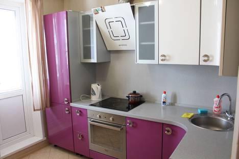Сдается 1-комнатная квартира посуточно в Ногинске, Самодеятельная улица 10А.