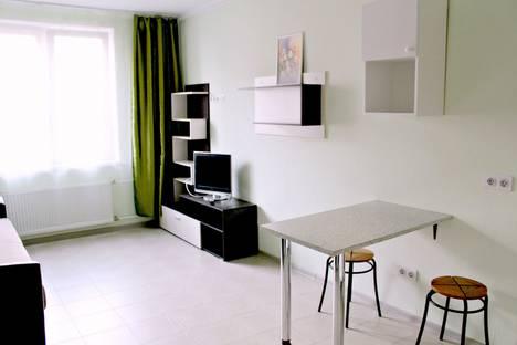 Сдается 2-комнатная квартира посуточно в Шушаре, Пушкин, Ростовская улица, 17/4.