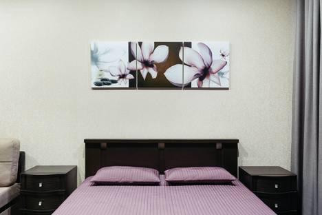 Сдается 1-комнатная квартира посуточно в Нижнем Новгороде, улица Родионова 195.