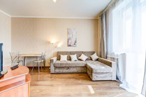 Сдается 1-комнатная квартира посуточно в Санкт-Петербурге, улица Ушинского 33 к 3.