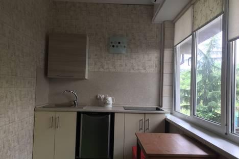 Сдается 1-комнатная квартира посуточно в Адлере, Известинский переулок 2.