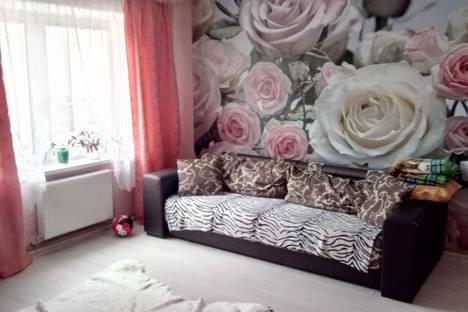 Сдается 1-комнатная квартира посуточно в Могилёве, улица Фатина.