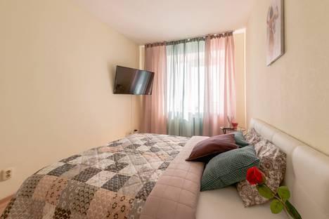 Сдается 1-комнатная квартира посуточно в Санкт-Петербурге, Коломяжский проспект 15к1.