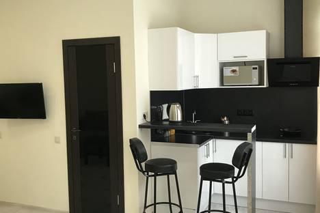 Сдается 1-комнатная квартира посуточно в Дедовске, Курочкина улица, 1.