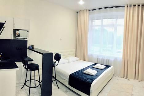 Сдается 1-комнатная квартира посуточно в Дедовске, Курочкина улица 1.