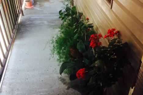 Сдается 1-комнатная квартира посуточно, Улица гочуа дом 7 район птицефабрика.