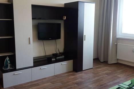 Сдается 1-комнатная квартира посуточно в Санкт-Петербурге, Витебский проспект, 99.