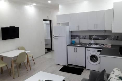 Сдается 2-комнатная квартира посуточно, Batumi, Inasaridze Street, 8.