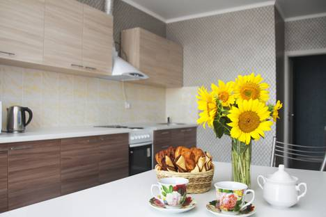 Сдается 1-комнатная квартира посуточно в Краснодаре, Старокубанская улица, 137к2.