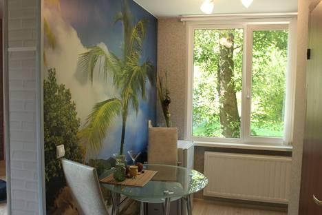 Сдается 1-комнатная квартира посуточно в Санкт-Петербурге, улица Лени Голикова, 34.