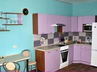 Сдается посуточно 1-комнатная квартира в Челябинске. 30 м кв. улица Университетская Набережная, 46
