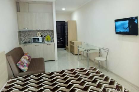 Сдается 1-комнатная квартира посуточно в Батуми, Batumi, Pirosmani Street, 18С.