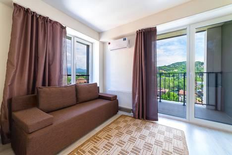 Сдается 1-комнатная квартира посуточно в Сочи, Краснодарский край,Старошоссейная улица, 5/6.