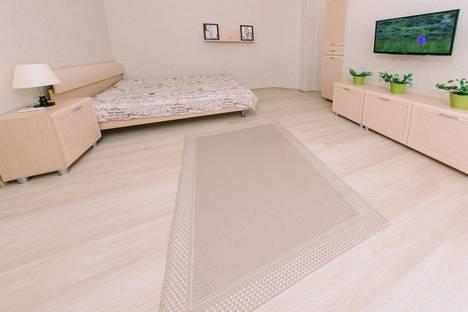 Сдается 1-комнатная квартира посуточно в Оренбурге, улица Чкалова, 51/1.