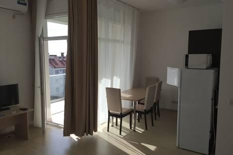 Сдается 1-комнатная квартира посуточно в Адлере, улица Парусная, 17.