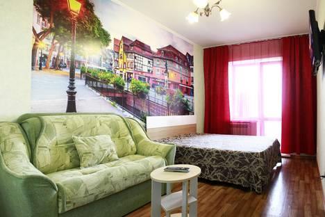 Сдается 1-комнатная квартира посуточно, улица Трофимова, 113 корпус 1.