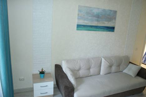 Сдается 1-комнатная квартира посуточно, Санкт-Петербург,Малая улица, 28.