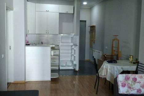 Сдается 1-комнатная квартира посуточно в Тбилиси, T'bilisi, Mikheil Burdzgla Street, 58/60.