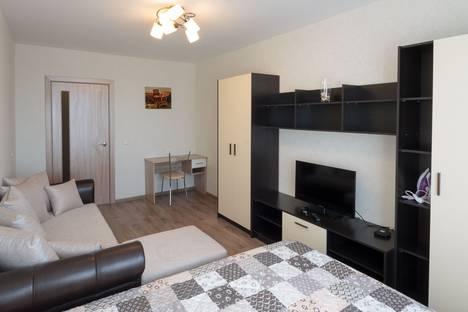 Сдается 1-комнатная квартира посуточно в Нижнем Новгороде, Новинки, Окская улица, 1.