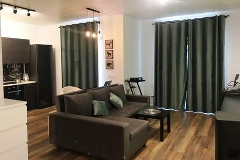 Сдается 2-комнатная квартира посуточно в Красной Поляне, Эстосадок, Березовая улица, 88.