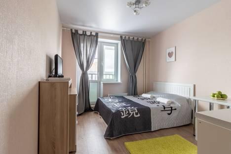 Сдается 1-комнатная квартира посуточно в Нижнем Новгороде, улица Бурнаковская, 119.
