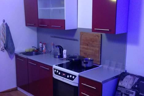 Сдается 1-комнатная квартира посуточно, Санкт-Петербург, улице Федора Абрамова, 16.