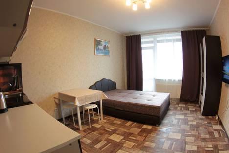 Сдается 1-комнатная квартира посуточно в Шушаре, Санкт-Петербург, Вишерская улица 2.
